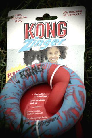 Kong Zinger 1